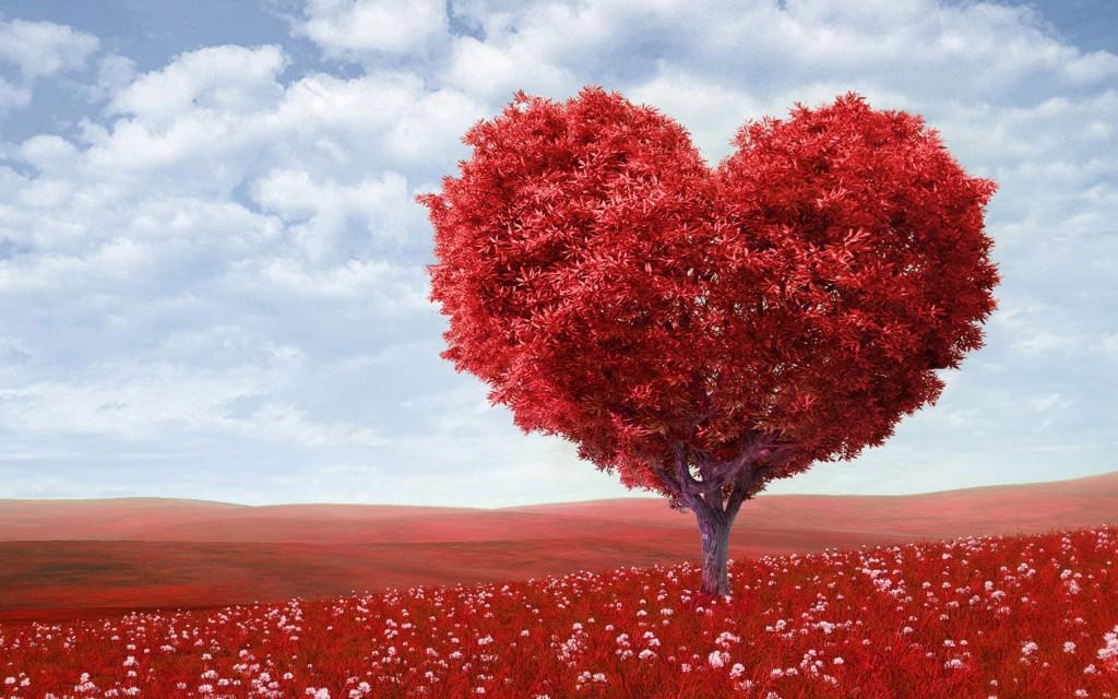 Avenir amour en tchat