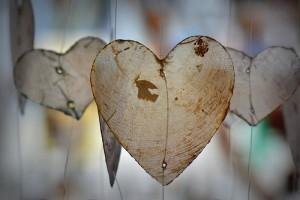 Avenir amour 2017 avec tirage de tarot par chat