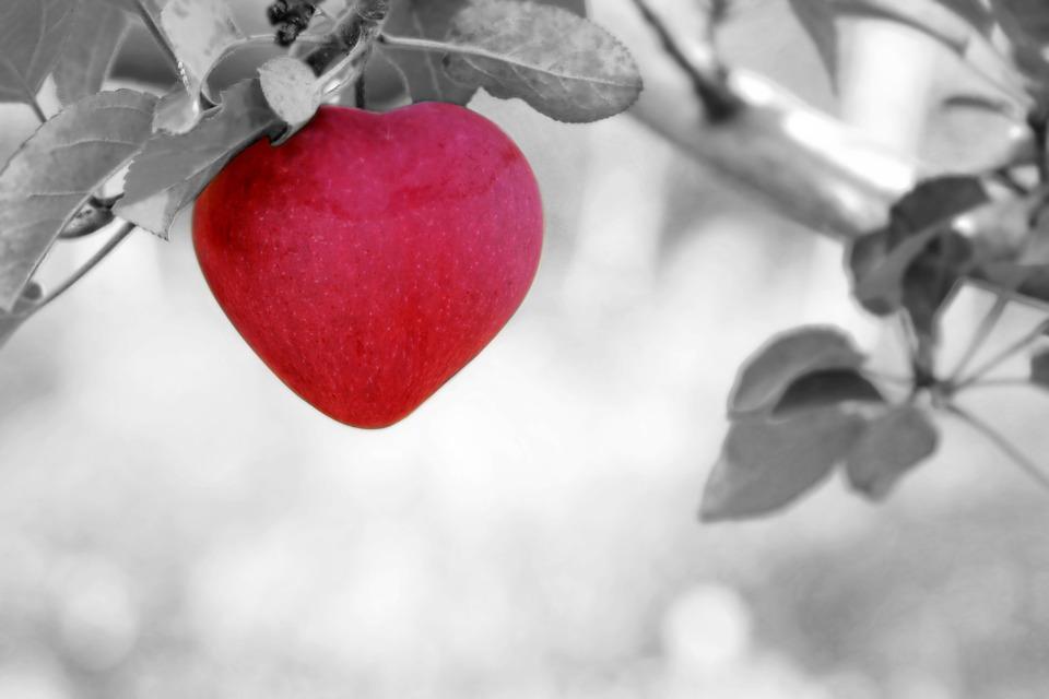Oracle gratuit de l'amour pour connaitre son avenir