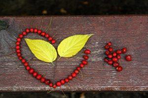 Tarot amoureux gratuit pour détecter un amour secret